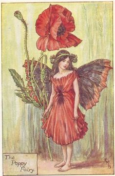 flower fairy prints | Flower Fairy - Poppy Original vintage print Cicely Mary Barker ...