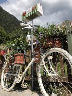 Ideen in meinem Garten auf 1000 m Seehöhe. Terrarium, Deco Floral, Lawn And Garden, House, Ideas, Terrariums