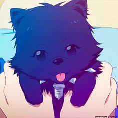 Tv Anime, Anime Plus, Anime Furry, Anime Demon, Anime Animals, Cute Animals, Cute Things From Japan, Manga, Nitro Chiral