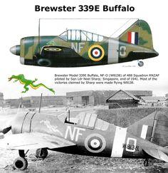 Brewster 339E Buffalo