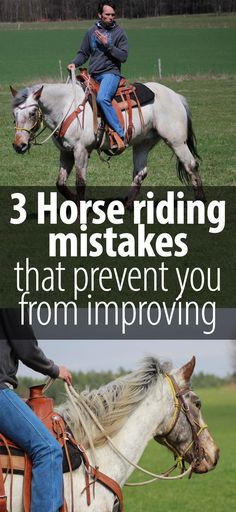 Some horse training tips everyone should keep in mind. I am sure I did every single one of them at one point or another