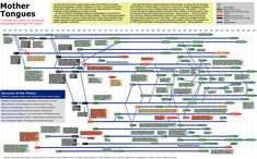 Computer Programming Languages Chart