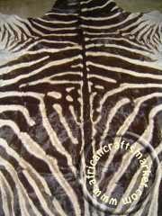 Zebra hide 8 close up