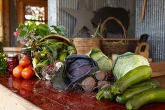 Oogst van de moestuin Southern Comfort, Vegetable Garden, Pickles, Cucumber, Zucchini, Healthy Living, Gardening, Vegetables, Plants