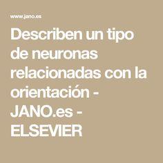 Describen un tipo de neuronas relacionadas con la orientación  - JANO.es - ELSEVIER