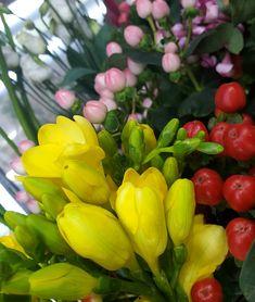 💛 Flowers Of Spring . Fresh Flowers, Yellow Flowers, Thessaloniki, Flower Art, Greece, Vegetables, Spring, Inspiration, Beautiful