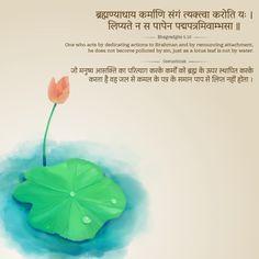 Sanskrit Quotes, Sanskrit Mantra, Vedic Mantras, Lord Krishna, Lord Shiva, Leaf Quotes, Geeta Quotes, Sanskrit Language, Lotus Leaves