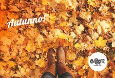 È arrivato l'autunno, sfoggiate i caldi colori dele foglie anche sui vostri capelli!
