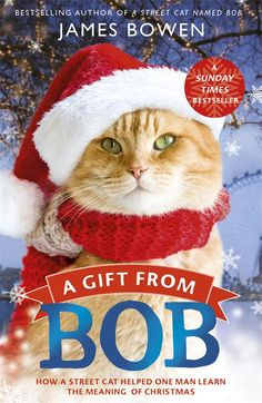 45. A book set during Christmas | A Gift from Bob by James Bowen