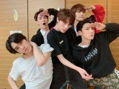 Winwin, Taeyong, Jaehyun, Nct 127, Shinee, Grupo Nct, Nct Group, Young K, Nct Life