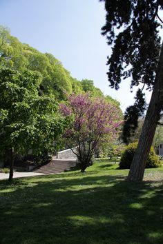 Bastions Park in the spring in Geneva.