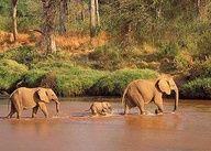 Tsavo East National Park in Kenya