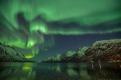 Ersfjorden Aurora
