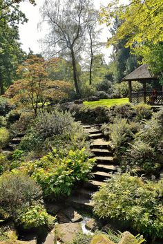 """benbobjr posted a photo:  Winterbourne Botanical Gardens, Edgbaston, Birmingham, West Midlands.  Winterbourne Botanic Garden is the botanic garden of the University of Birmingham, located in Edgbaston, Birmingham. It is adjacent to Edgbaston Pool, a Site of Special Scientific Interest.  Set in 7 acres (28,000 m2), it is notable as a rare surviving example of an early 20th-century high status suburban """"villa"""" garden, inspired by the Arts and Crafts movement of the Edwardian period. Both…"""