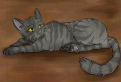 Cats-Warriors Крутобок