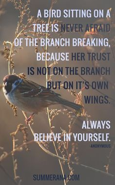 A bird sitting on a tree is never afraid of the branch breaking, because her trust is not on the branch but on it's own wings. Always believe in yourself.