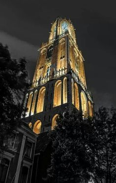 . Utrecht, Empire State Building, 21st Century, Notre Dame, Amsterdam, Cool Pictures, Architecture, City, Places