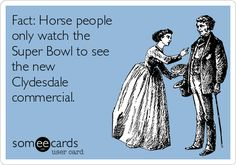 Fact: Horse people only watch the Super Bowl to see the new Clydesdale commercial. | Super Bowl Ecard