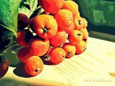 6049926703_8af2d0723e_b by Cristina Dirnea, via Flickr Mobile Photos, Watermelon, Fruit