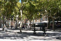 La Place des Lices St Tropez