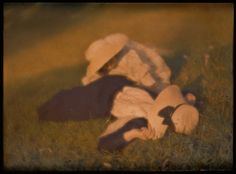 Heinrich Kühn | [Mary Warner and Lotte in the Meadow] | The Met