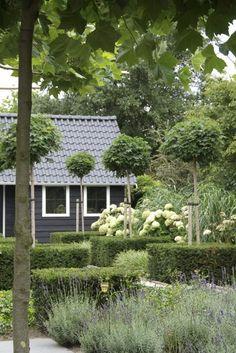 Alle seine Sinne im Garten entdecken : moderner Garten von Paul Marie Creation