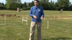 Michael Ellis' Philosophy of Schutzhund (Protection Dog) Dog Training, via YouTube.