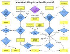 fields of linguistics