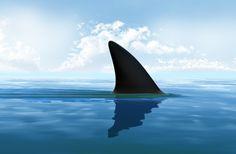 Shark Fin Soup – Let's Stop it Worldwide http://www.dive.in/articles/shark-fin-soup/