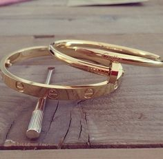 cartier staples — love bracelet & just un clou