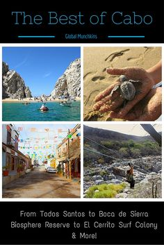 Headed to Cabo?  Here's a list from our contributing family on the absolute BEST things to do in Cabo with kids in tow! .   .   . photo credits-  Travel U.S. News Tripadvisor Chezus.com Allaboutcabo.com