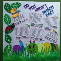 About insects School Board Decoration, School Decorations, Bulletin Board Design, Bulletin Boards, Pre School, Sunday School, Elsa Coloring Pages, Butterfly Crafts, Second Grade