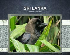 Calendrier 2014 - Passez une année au Sri Lanka !  http://www.lulu.com/shop/isabelle-escapade/sri-lanka/calendar/product-21307069.html