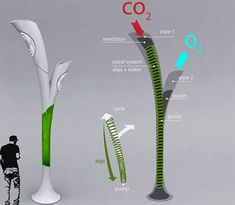 The Biolamp design, from Hungarian designer Peter Horvath, is basically a chamber containing water and algae. The algae eats the CO2 from the environment, which is sucked into the chamber and circulated to the algae by a pump. According to the designer, the algae becomes saturated with CO2 at which point it becomes biomass that is pushed through underground tubes to a nearby filler station. The chamber inside the street lamp is refilled with more algae and water to start the process again.