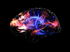 What Are the Top 4 Dangerous Toxins to the Brain?|TIS