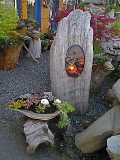 # DRIFTWOOD ART -Even tho this has a glass insert , I think just the oval cut out would be good, & or a piece of wirenetting with some #succulents tucked in.(Fused glass light in driftwood with driftwood planter(-jbell)