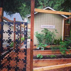New garden area