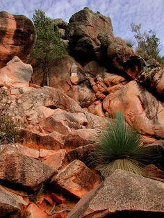 Earth: south Australia