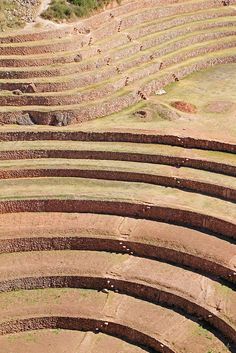Moray, Sacred Valley, Cusco, Peru.  Photo: daniel.virella, via Flickr