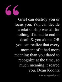 Grief can destroy you or focus you.  You can decide a relationship was all for nothing if it had to end in death & you alone.  OR you can realize that every moment of it had more meaning than you dared to recognize at the time, so much meaning it scared you. ~ Dean Koontz