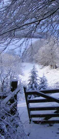 Winter at Love North Devon, a 53 acre organic estate on the edge of Exmoor in North Devon