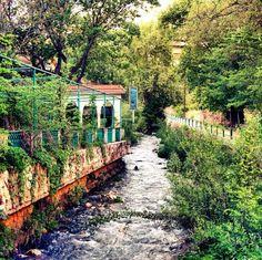 Zahlé, My City                                                                                                                                                                                  More