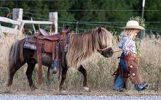 Cowgirl Shetland pony
