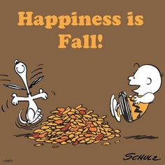Happiness is Fall!