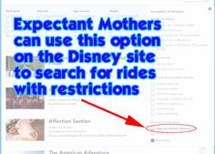 Expectant mothers can find which Disney World rides have restrictions using this search tool