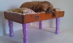 Upcycled Suitcase Pet Bed with Wooden Legs by SassamaFrass on Etsy, $85.00