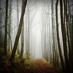 dreamy road pics of Wales by Instagramer madebyfinn