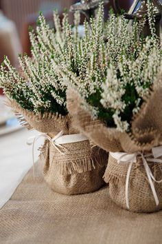 Rustic Wedding Table decorations, including burlap runners and burlap accessories, napkin rings, hessian wedding decor, burlap cutlery sleeves Burlap Centerpieces, Burlap Wedding Decorations, Burlap Party, Centerpiece Ideas, Diy Centrepieces, Potted Plant Centerpieces, Lavender Centerpieces, Christening Table Decorations, Burlap Wedding Centerpieces