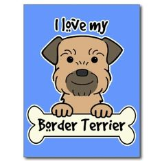 :) Border Terrier, West Highland Terrier, Little Brown, Brown Dog, Dog Names, Little Dogs, Mans Best Friend, Things That Bounce, Your Dog