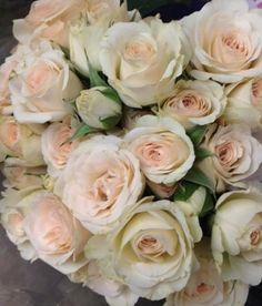 Brilliant stars bridal blush spray roses: all year $